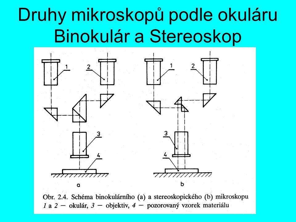 Druhy mikroskopů podle okuláru Binokulár a Stereoskop