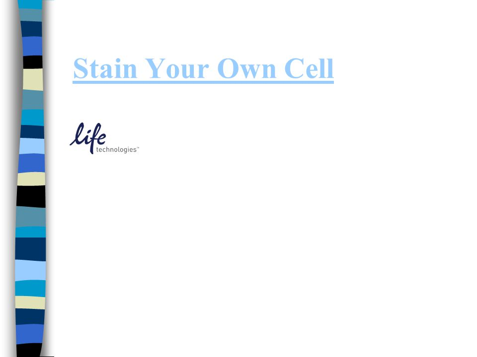 Stain Your Own Cell
