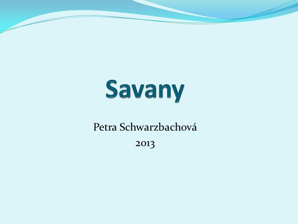 Petra Schwarzbachová 2013