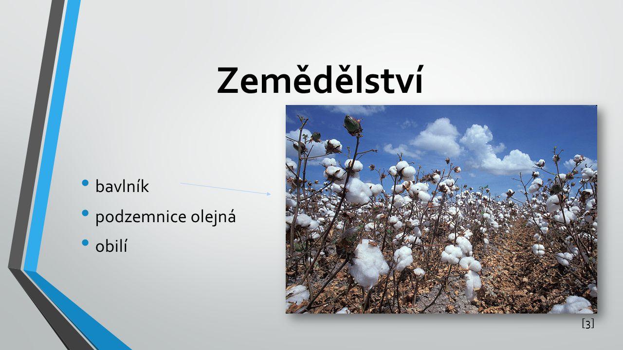Zemědělství bavlník podzemnice olejná obilí [3][3]