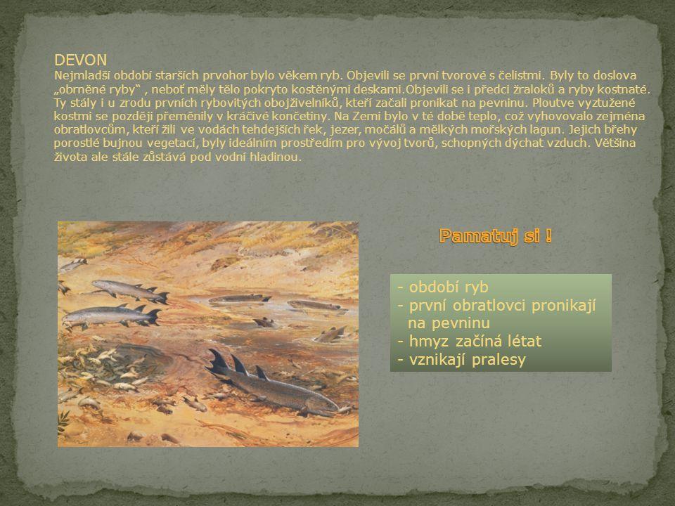 SILUR Jedno z nejkratších období prvohorní éry. Mohutné tlaky a síly, vycházející ze zemského nitra, vyzdvihly vysoká horstva, sopky chrlily žhavou lá