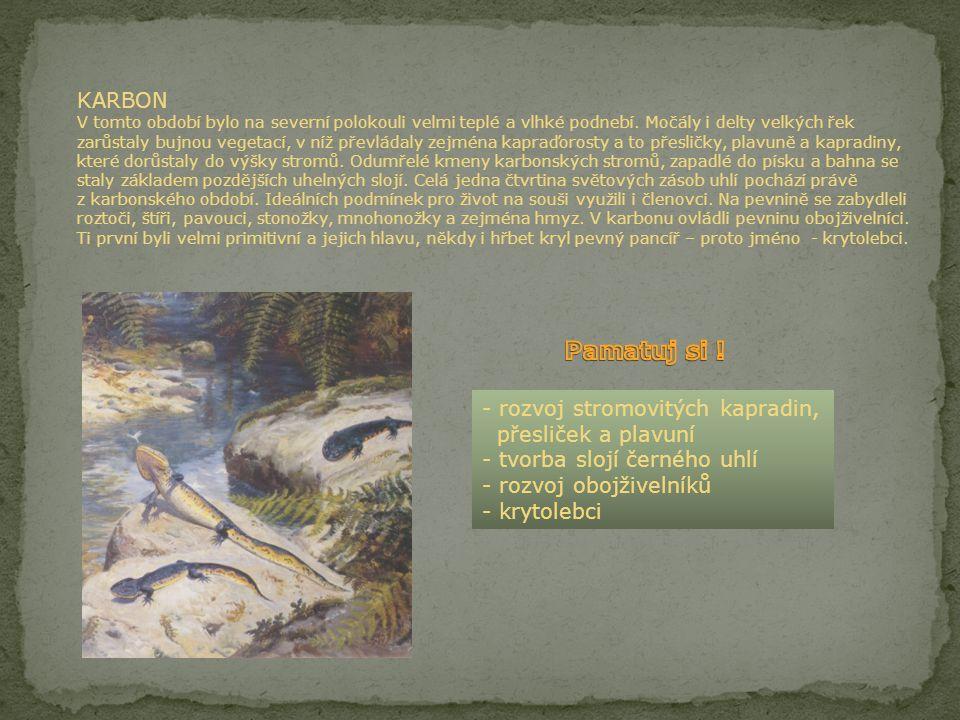 """DEVON Nejmladší období starších prvohor bylo věkem ryb. Objevili se první tvorové s čelistmi. Byly to doslova """"obrněné ryby"""", neboť měly tělo pokryto"""