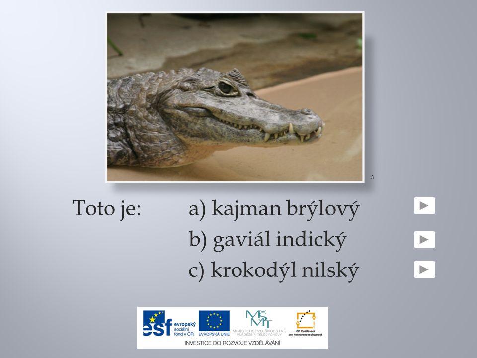 Toto je:a) kajman brýlový b) gaviál indický c) krokodýl nilský 8