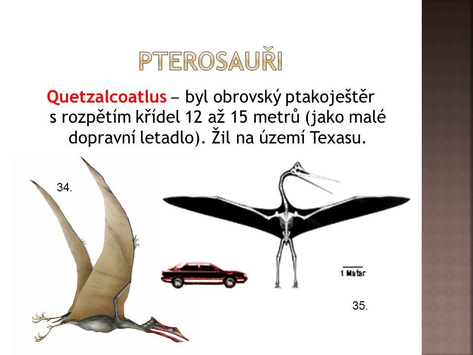 Quetzalcoatlus ‒ byl obrovský ptakoještěr s rozpětím křídel 12 až 15 metrů (jako malé dopravní letadlo).