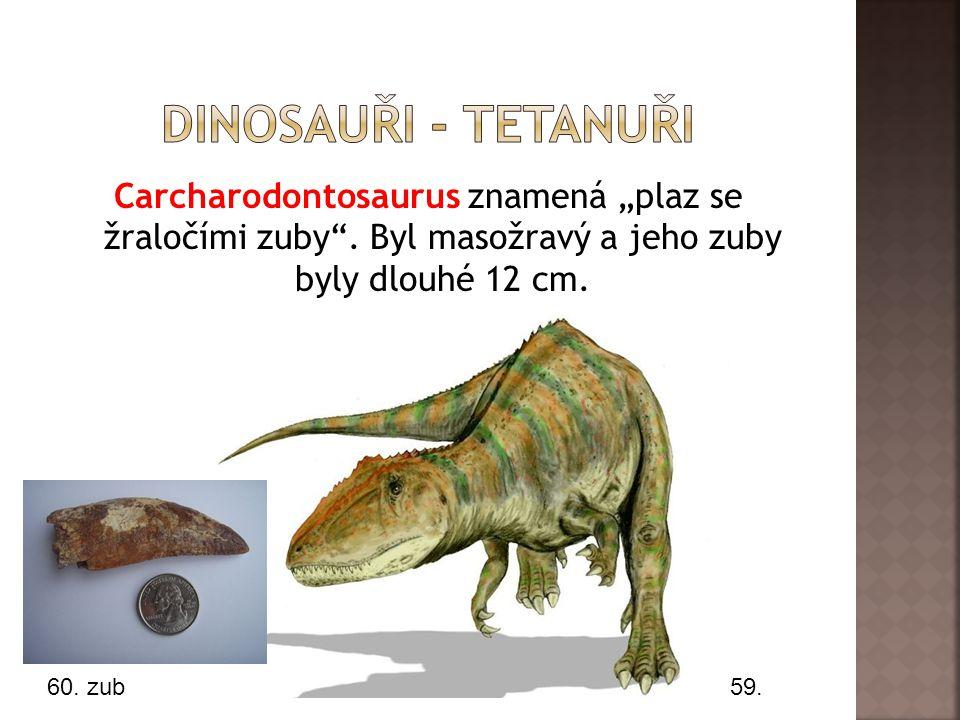 """Carcharodontosaurus znamená """"plaz se žraločími zuby ."""