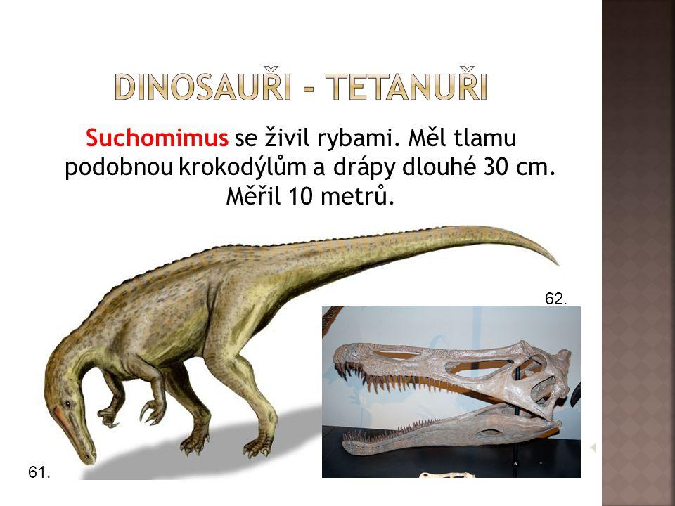 Suchomimus se živil rybami.Měl tlamu podobnou krokodýlům a drápy dlouhé 30 cm.