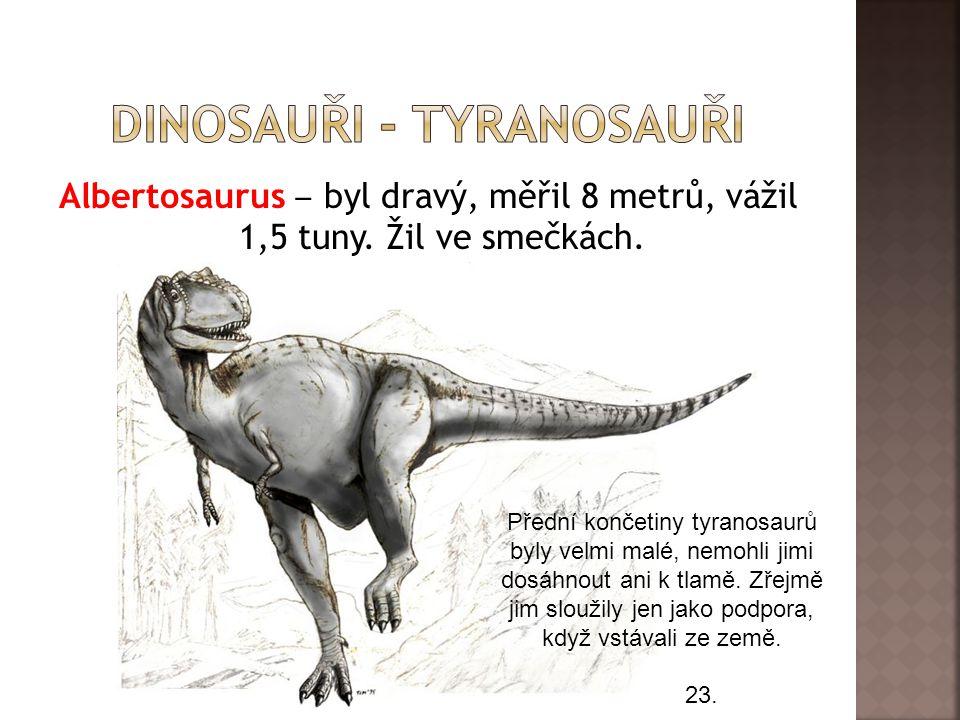 Albertosaurus ‒ byl dravý, měřil 8 metrů, vážil 1,5 tuny.