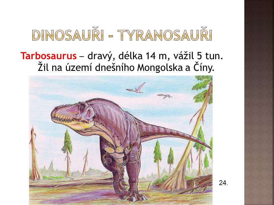 Tarbosaurus ‒ dravý, délka 14 m, vážil 5 tun. Žil na území dnešního Mongolska a Číny. 24.