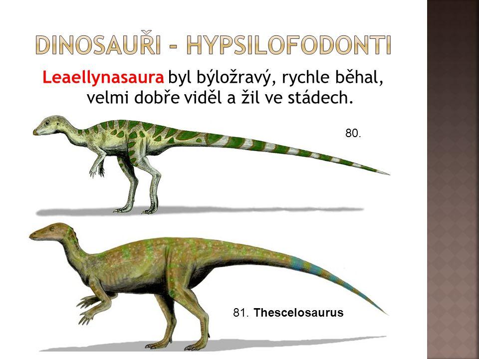 Leaellynasaura byl býložravý, rychle běhal, velmi dobře viděl a žil ve stádech.