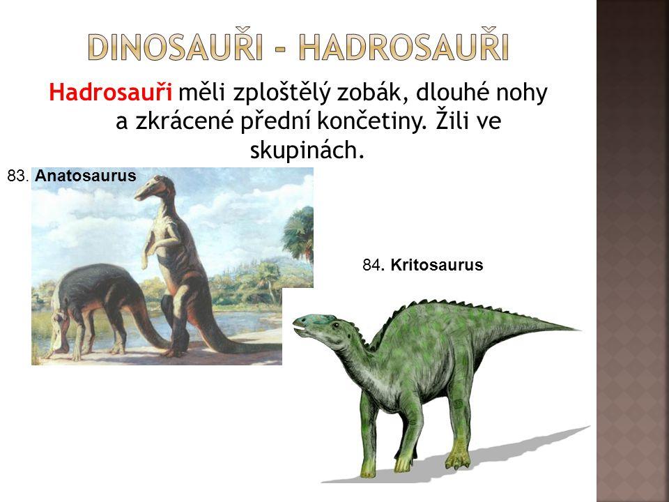Hadrosauři měli zploštělý zobák, dlouhé nohy a zkrácené přední končetiny.