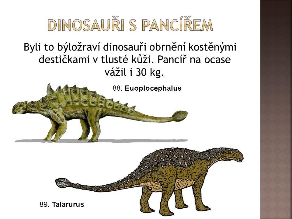 Byli to býložraví dinosauři obrnění kostěnými destičkami v tlusté kůži.