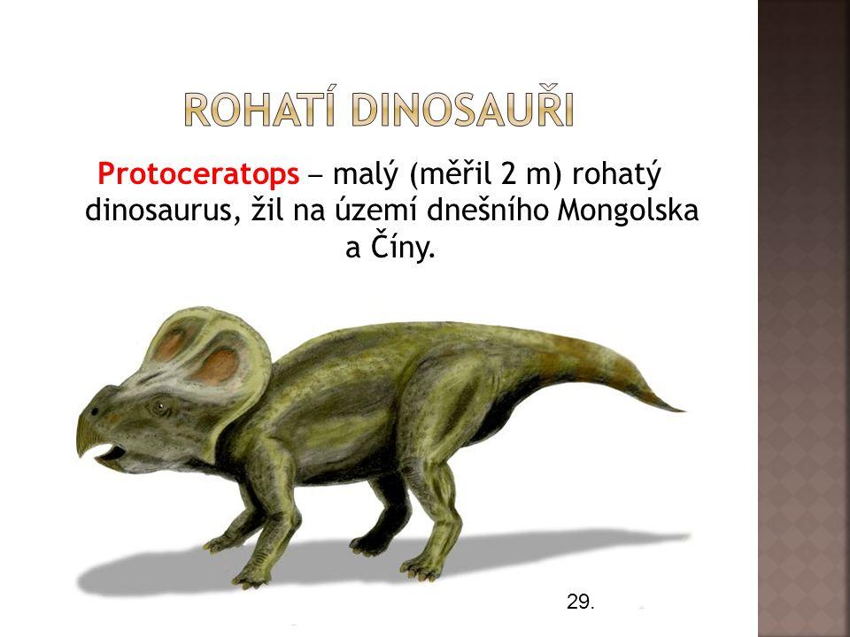 Protoceratops ‒ malý (měřil 2 m) rohatý dinosaurus, žil na území dnešního Mongolska a Číny. 29.