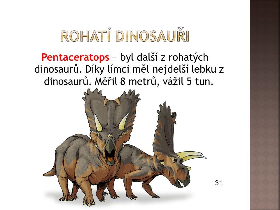 Pentaceratops ‒ byl další z rohatých dinosaurů.Díky límci měl nejdelší lebku z dinosaurů.