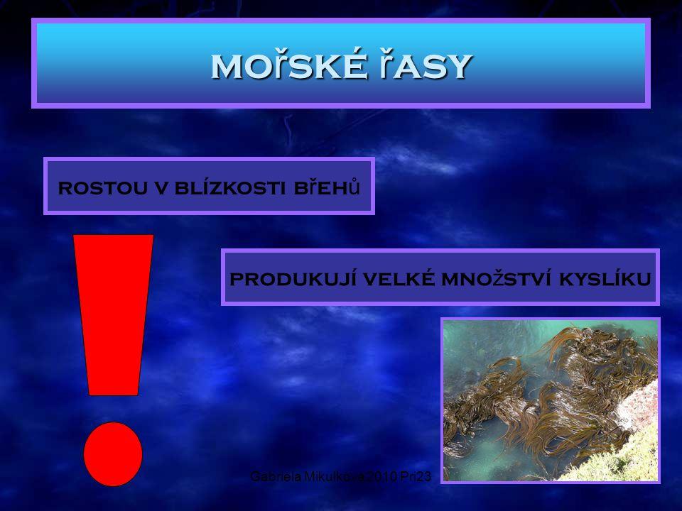 Gabriela Mikulková 2010 Pri23 mo ř ské ř asy rostou v blízkosti b ř eh ů produkují velké mno ž ství kyslíku
