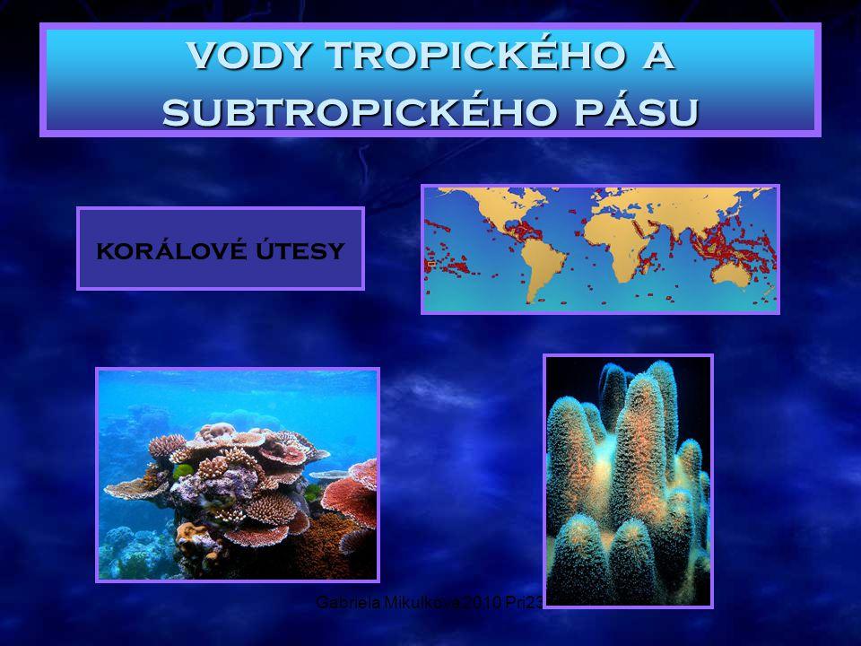 Gabriela Mikulková 2010 Pri23 vody tropického a subtropického pásu korálové útesy