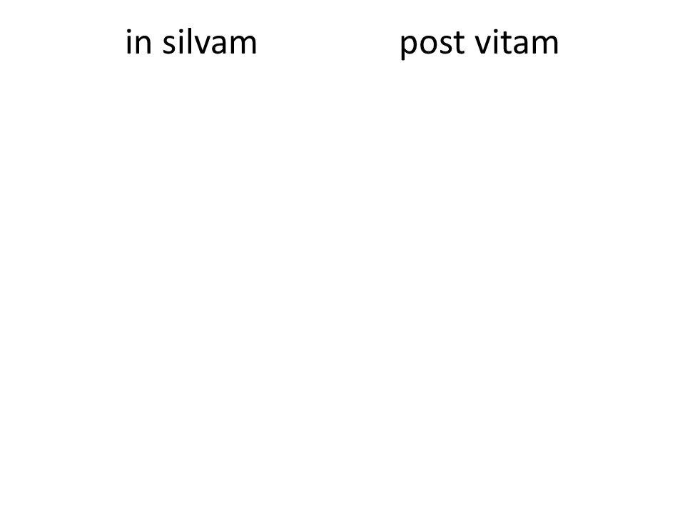 inter puellasante villam