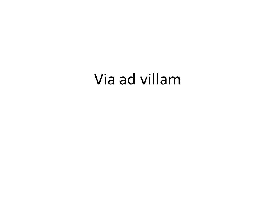 Sum in- schola - silvae - villa - viae