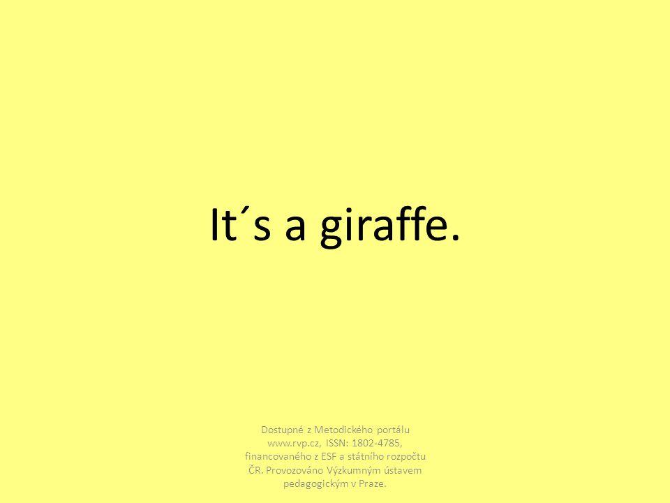 It´s a giraffe.