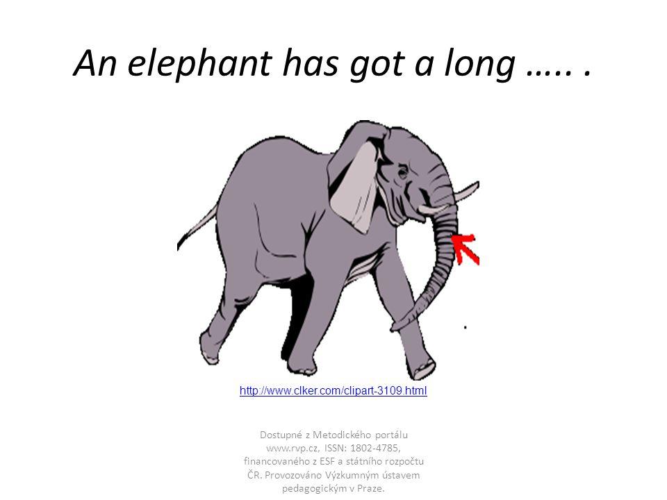 An elephant has got a long …...