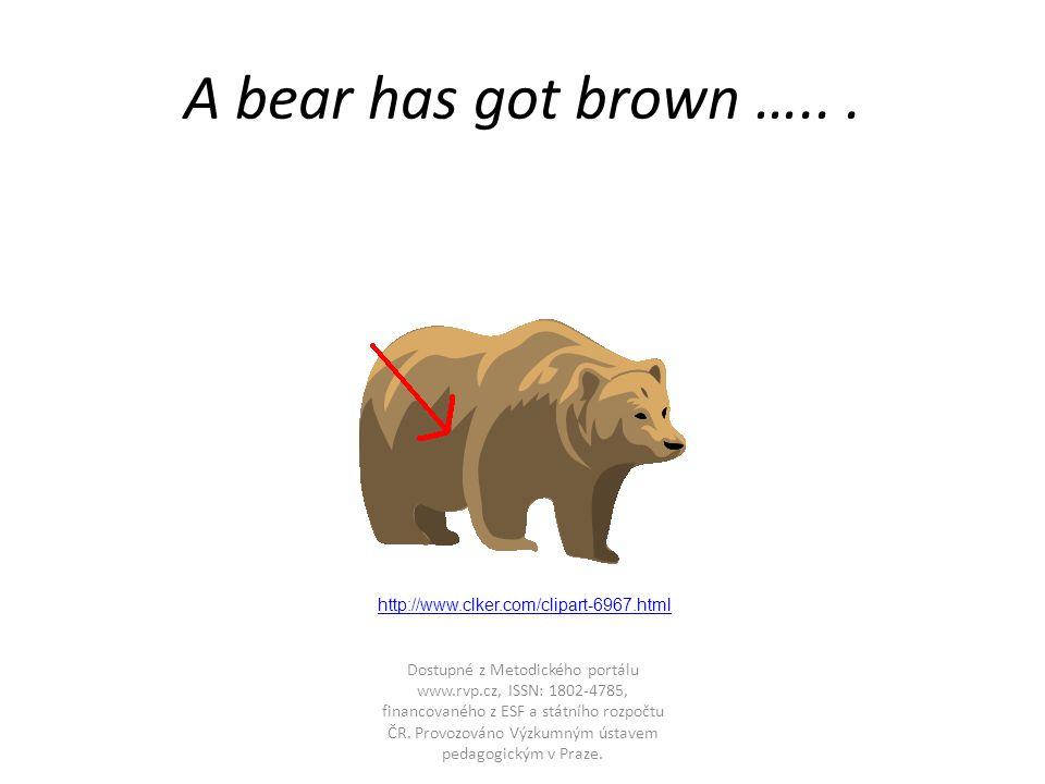 A bear has got brown …...