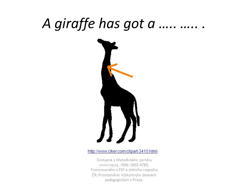 A giraffe has got a ….. …...
