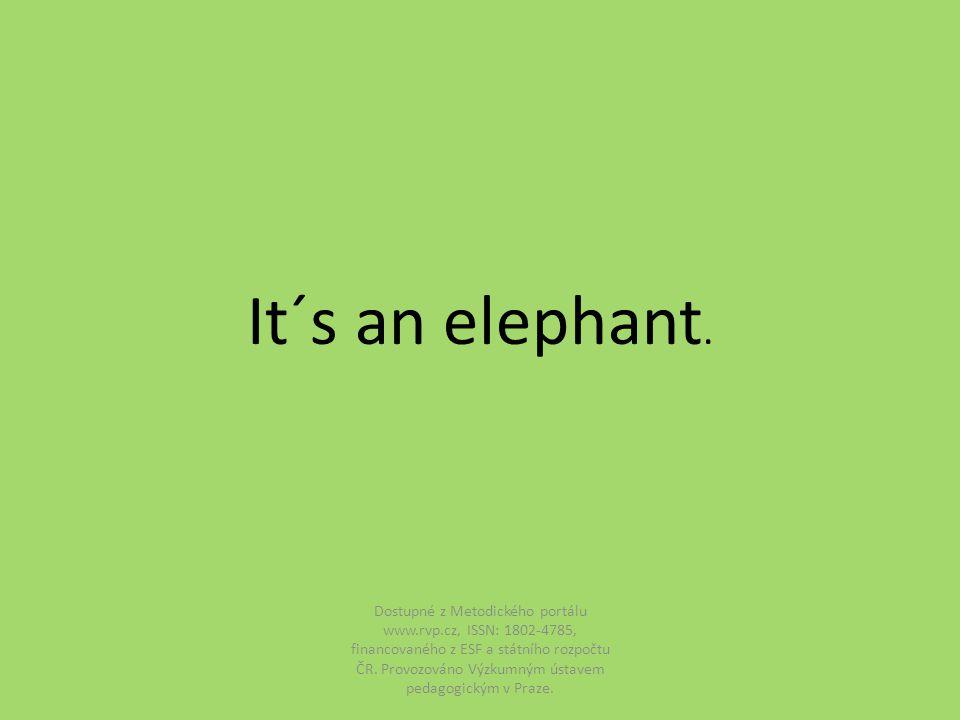 It´s an elephant.