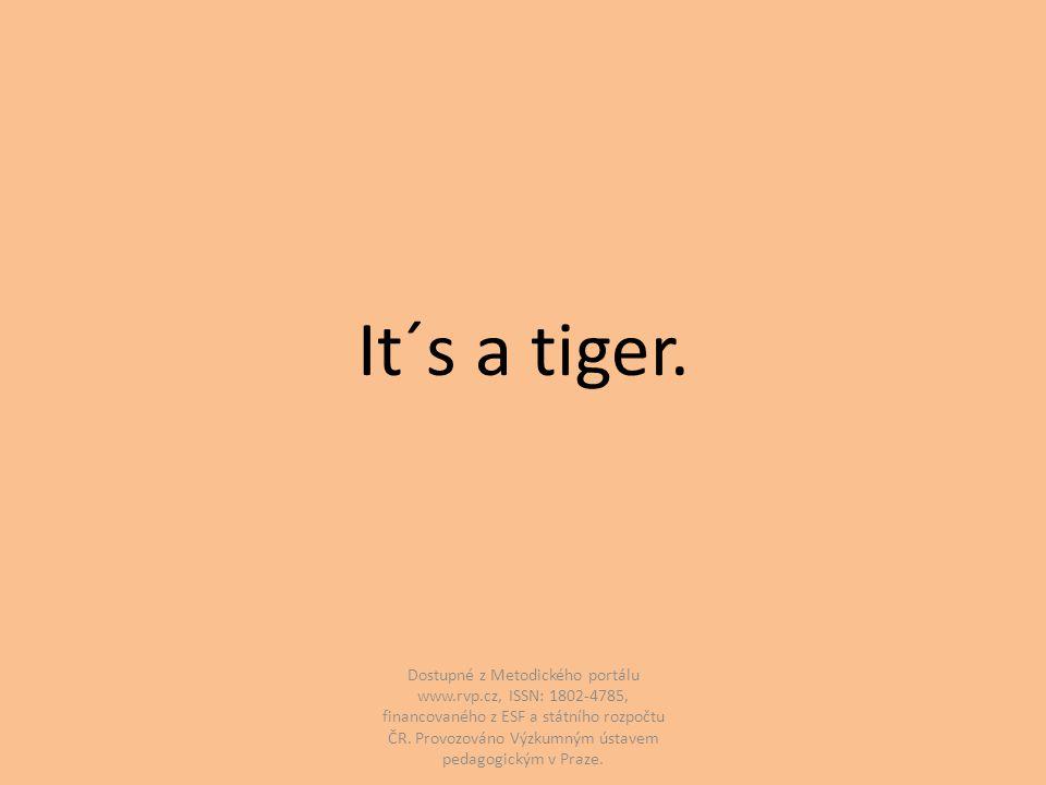 It´s a tiger.
