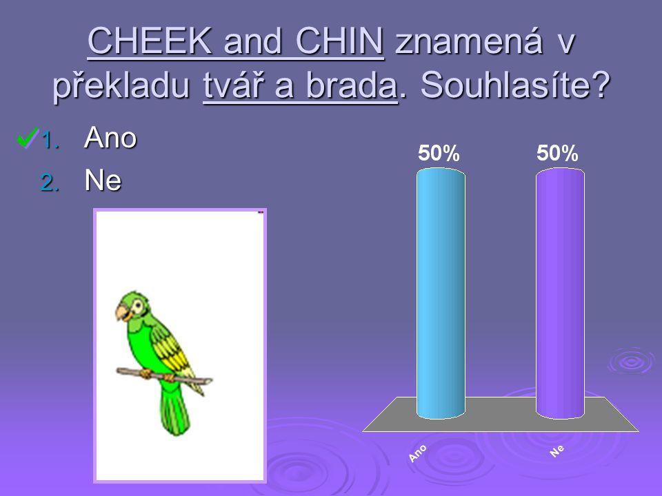 CHEEK and CHIN znamená v překladu tvář a brada. Souhlasíte? 1. Ano 2. Ne