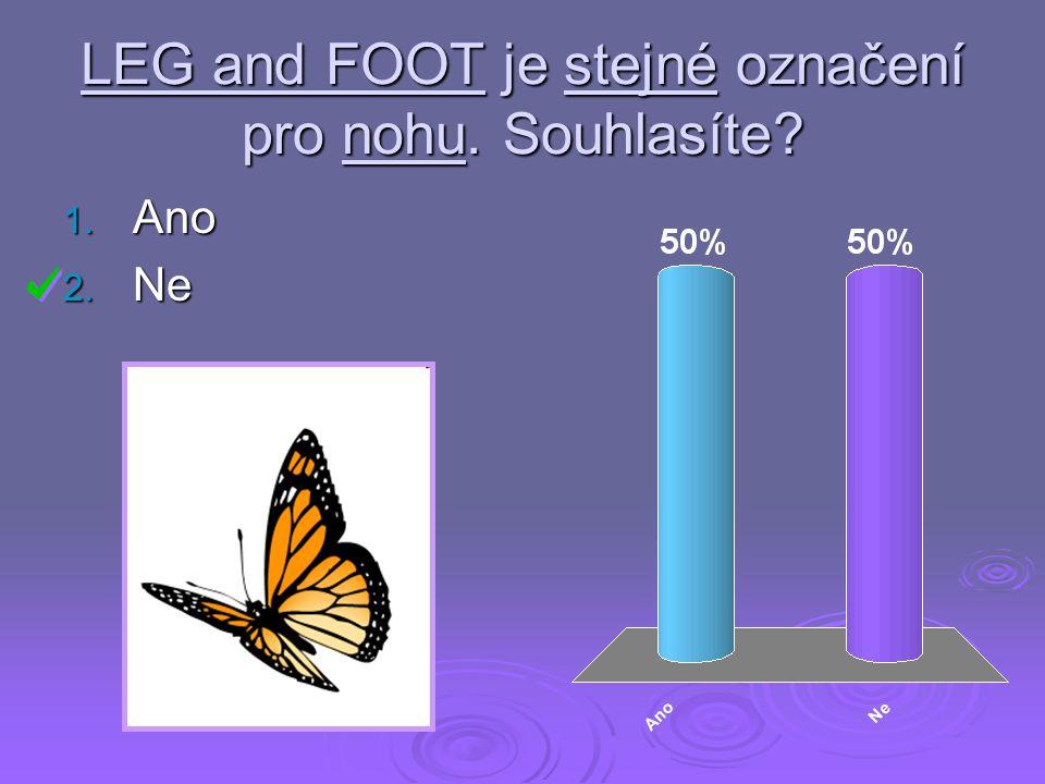 LEG and FOOT je stejné označení pro nohu. Souhlasíte? 1. Ano 2. Ne