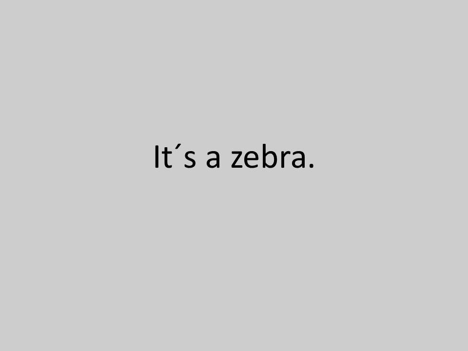 It´s a zebra.