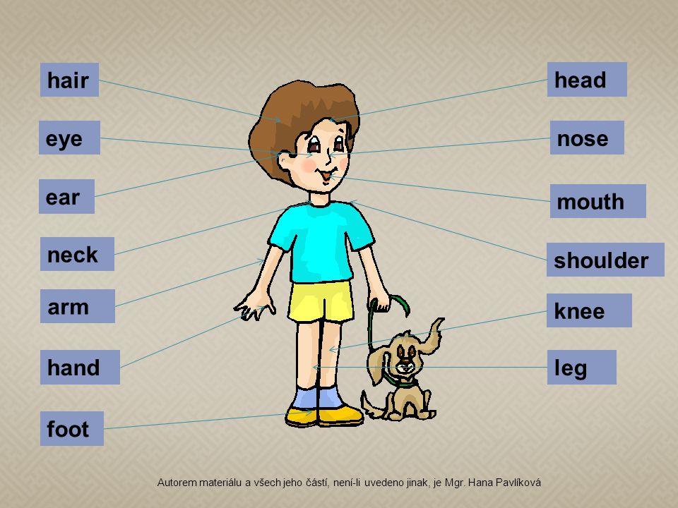 head hair eyenose ear mouth neck shoulder arm hand knee leg foot Autorem materiálu a všech jeho částí, není-li uvedeno jinak, je Mgr.