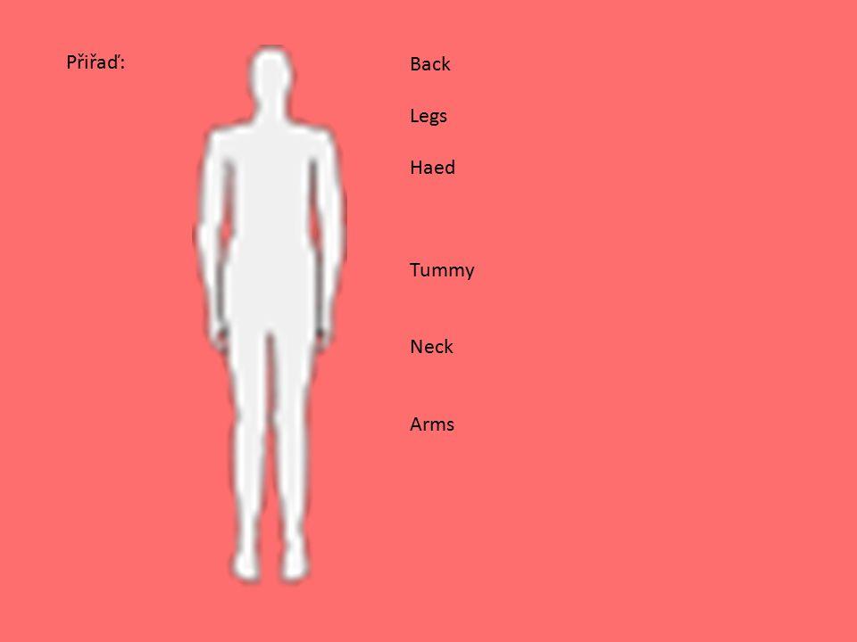Back Legs Haed Tummy Neck Arms Přiřaď: