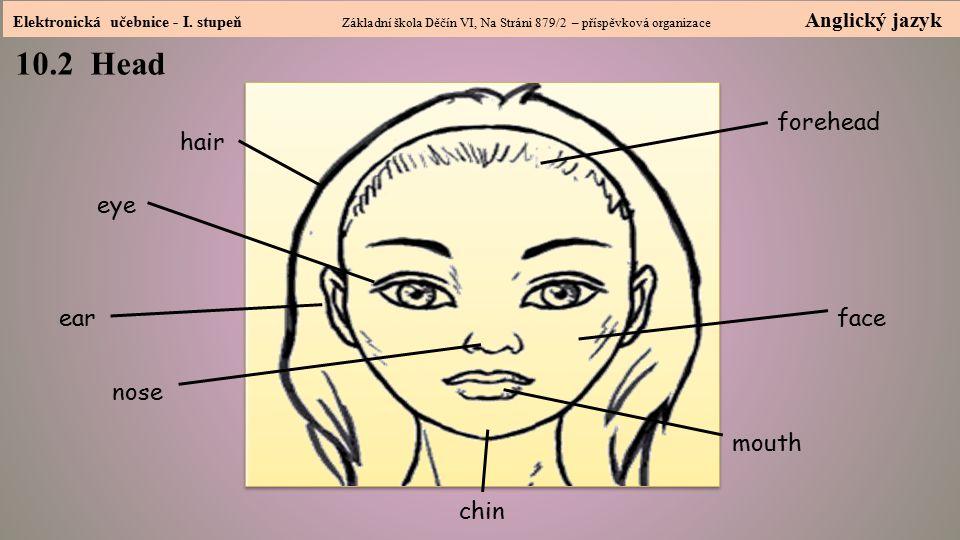 Elektronická učebnice - I. stupeň Základní škola Děčín VI, Na Stráni 879/2 – příspěvková organizace Anglický jazyk 10.2 Head hair Head eye ear nose fa