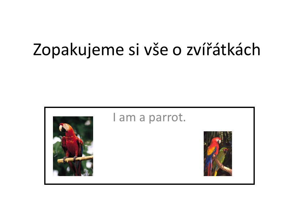 Zopakujeme si vše o zvířátkách I am a parrot.
