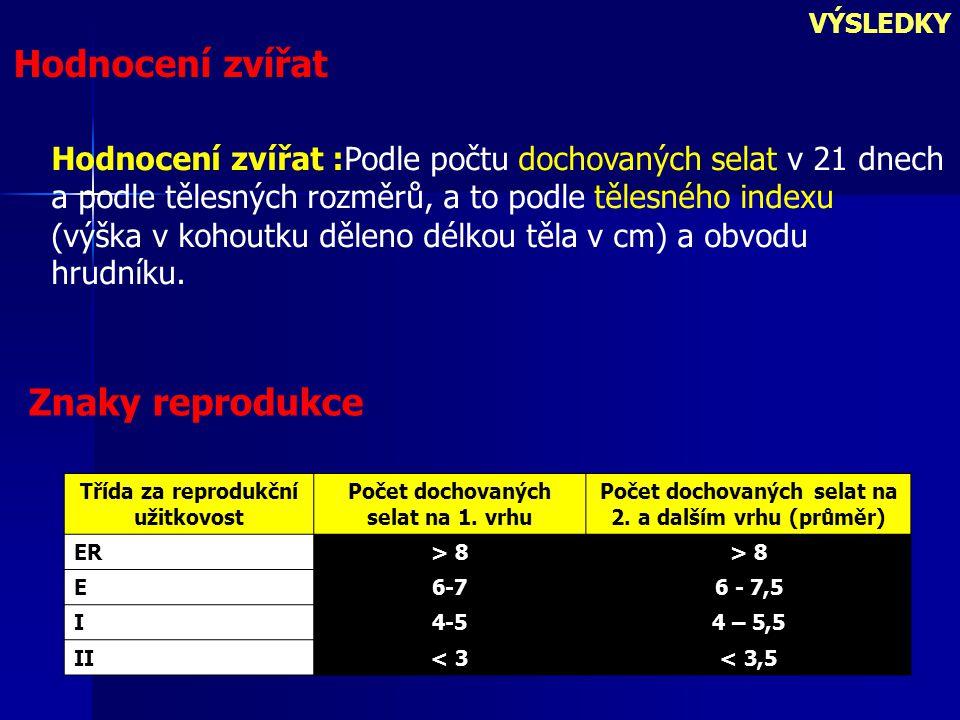 Hodnocení zvířat VÝSLEDKY Hodnocení zvířat :Podle počtu dochovaných selat v 21 dnech a podle tělesných rozměrů, a to podle tělesného indexu (výška v kohoutku děleno délkou těla v cm) a obvodu hrudníku.