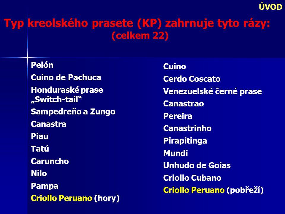 """ÚVOD Typ kreolského prasete (KP) zahrnuje tyto rázy: (celkem 22) Pelón Cuino de Pachuca Honduraské prase """"Switch-tail Sampedreño a Zungo Canastra Piau Tatú Caruncho Nilo Pampa Criollo Peruano (hory) Cuino Cerdo Coscato Venezuelské černé prase Canastrao Pereira Canastrinho Pirapitinga Mundi Unhudo de Goias Criollo Cubano Criollo Peruano (pobřeží)"""