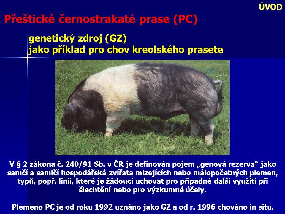 ÚVOD Přeštické černostrakaté prase (PC) genetický zdroj (GZ) jako příklad pro chov kreolského prasete V § 2 zákona č. 240/91 Sb. v ČR je definován poj