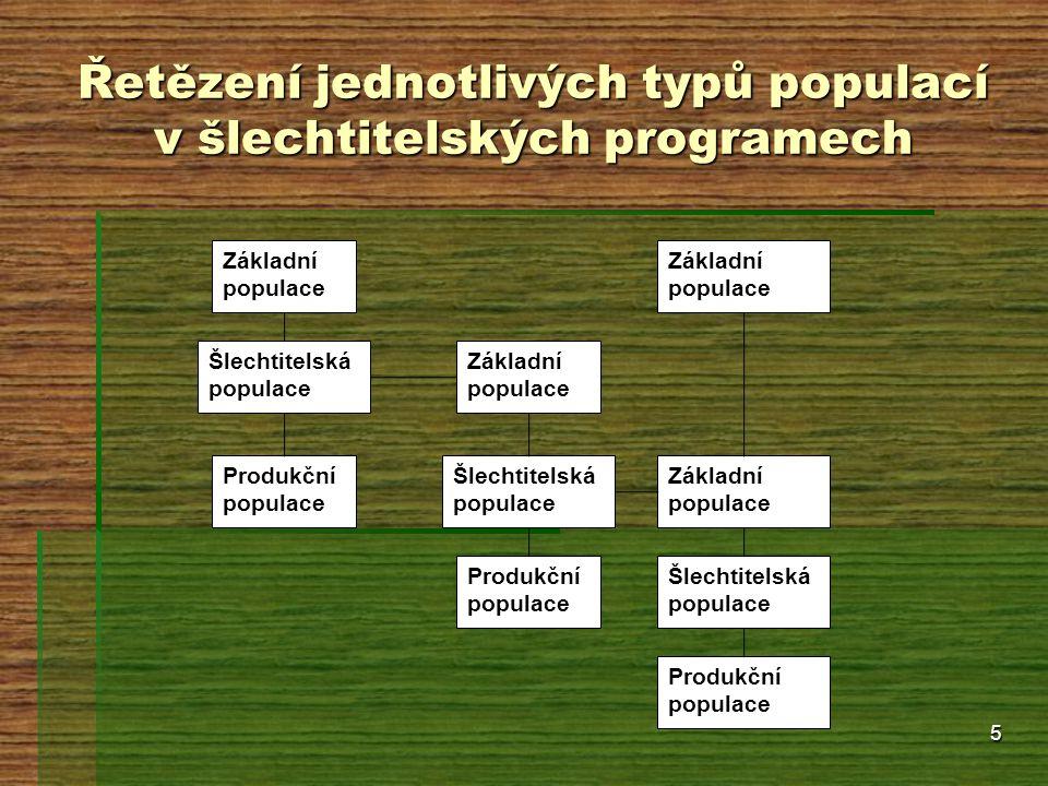5 Řetězení jednotlivých typů populací v šlechtitelských programech Základní populace Šlechtitelská populace Produkční populace Šlechtitelská populace