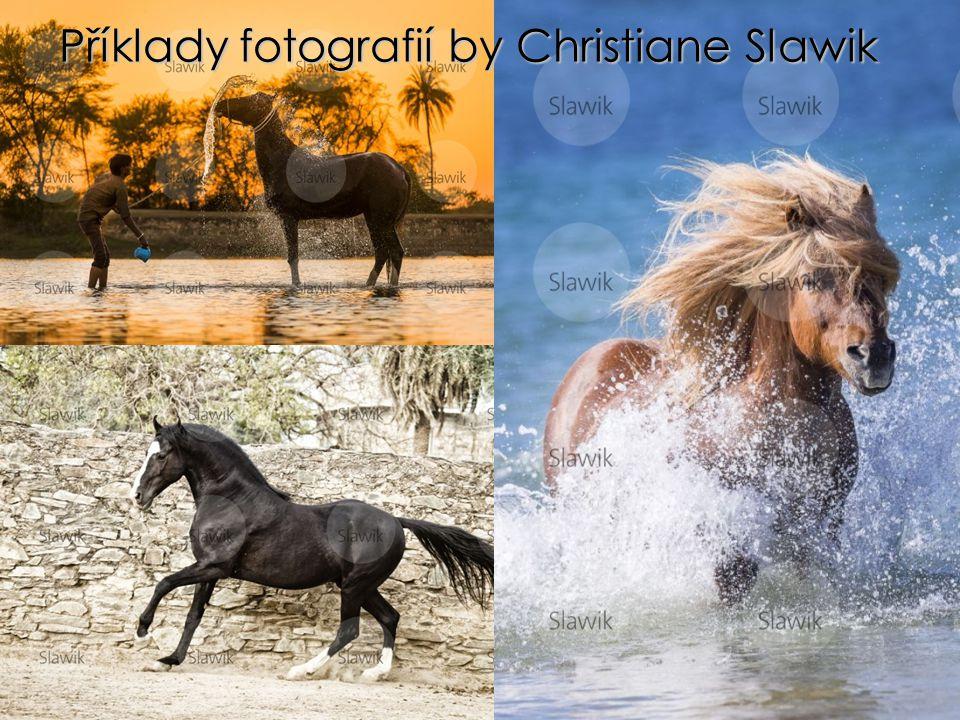 Příklady fotografií by Christiane Slawik