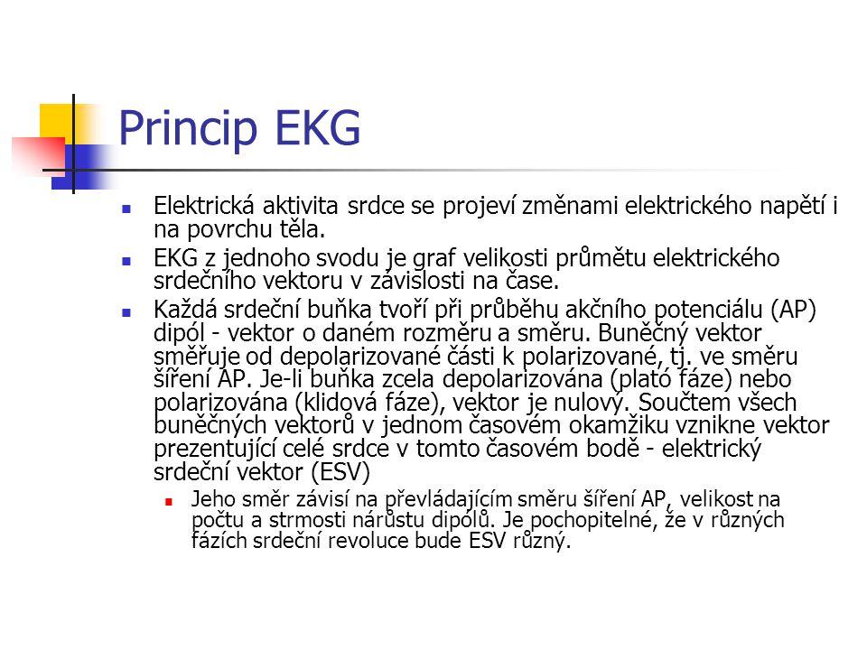 Princip EKG Elektrická aktivita srdce se projeví změnami elektrického napětí i na povrchu těla. EKG z jednoho svodu je graf velikosti průmětu elektric