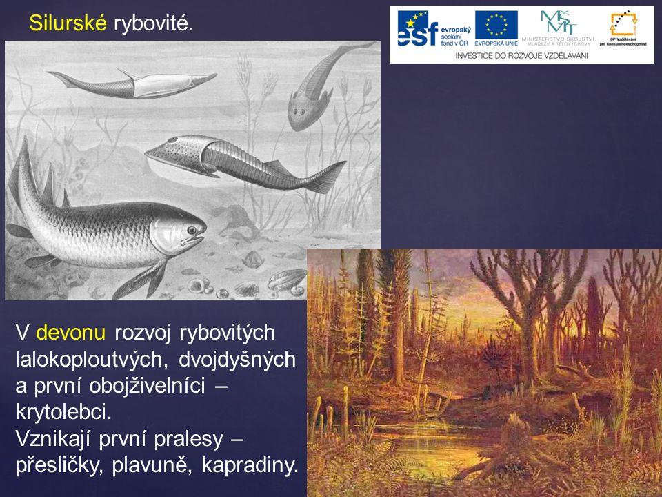 Silurské rybovité. V devonu rozvoj rybovitých lalokoploutvých, dvojdyšných a první obojživelníci – krytolebci. Vznikají první pralesy – přesličky, pla