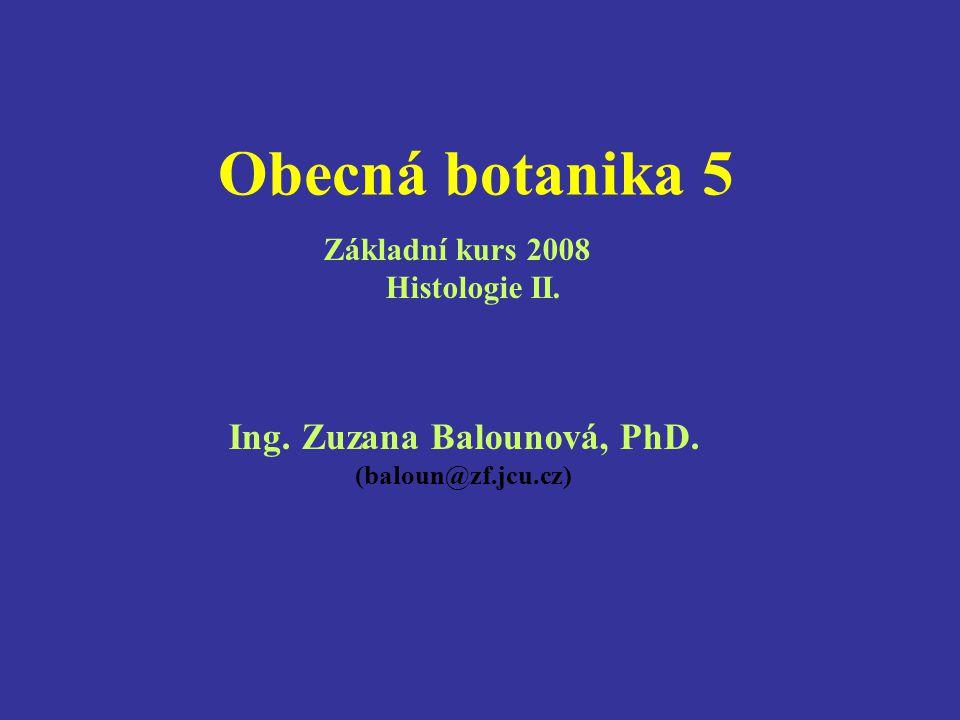 Obecná botanika 5 Ing. Zuzana Balounová, PhD. (baloun@zf.jcu.cz) Základní kurs 2008 Histologie II.