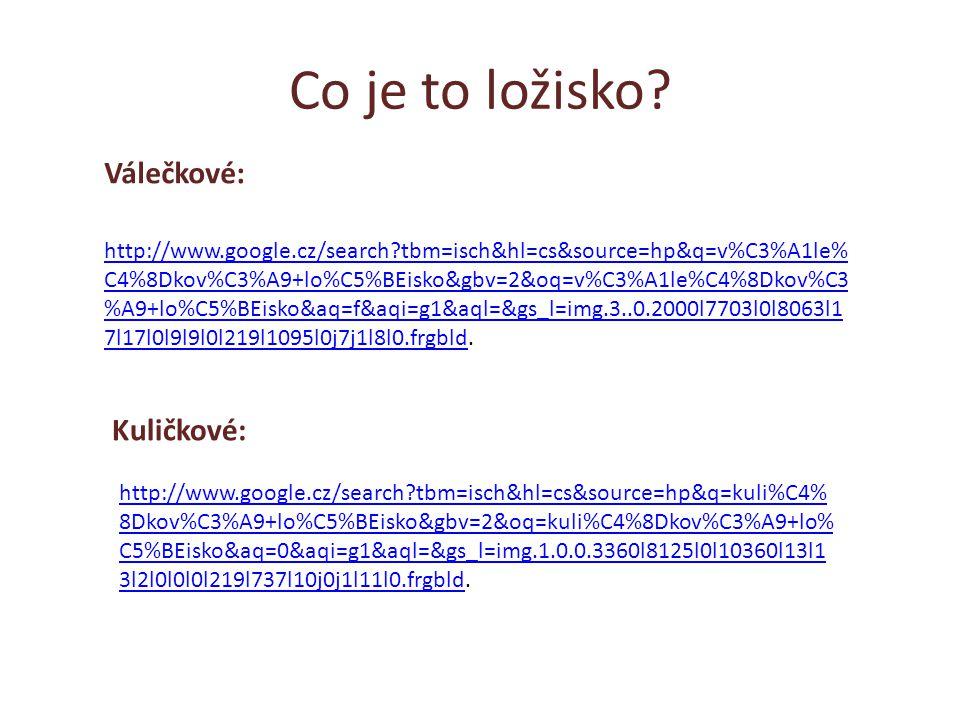 Co je to ložisko? http://www.google.cz/search?tbm=isch&hl=cs&source=hp&q=v%C3%A1le% C4%8Dkov%C3%A9+lo%C5%BEisko&gbv=2&oq=v%C3%A1le%C4%8Dkov%C3 %A9+lo%