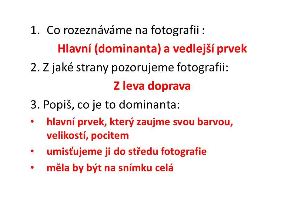 1.Co rozeznáváme na fotografii : Hlavní (dominanta) a vedlejší prvek 2.