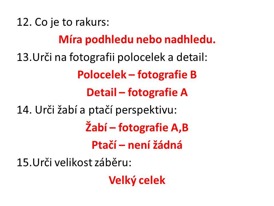 12. Co je to rakurs: Míra podhledu nebo nadhledu. 13.Urči na fotografii polocelek a detail: Polocelek – fotografie B Detail – fotografie A 14. Urči ža