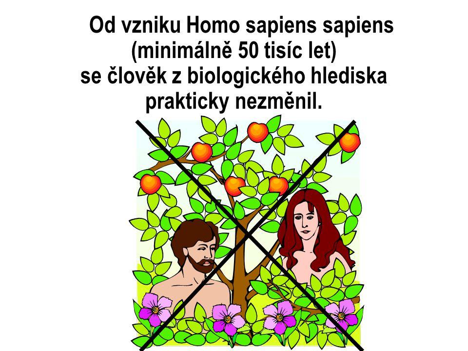 Od vzniku Homo sapiens sapiens (minimálně 50 tisíc let) se člověk z biologického hlediska prakticky nezměnil.
