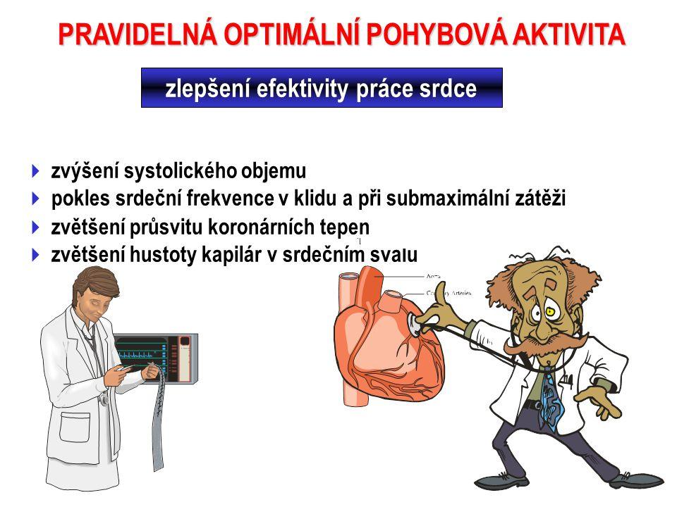  zvýšení systolického objemu  pokles srdeční frekvence v klidu a při submaximální zátěži PRAVIDELNÁ OPTIMÁLNÍ POHYBOVÁ AKTIVITA  zvětšení průsvitu koronárních tepen  zvětšení hustoty kapilár v srdečním svalu zlepšení efektivity práce srdce