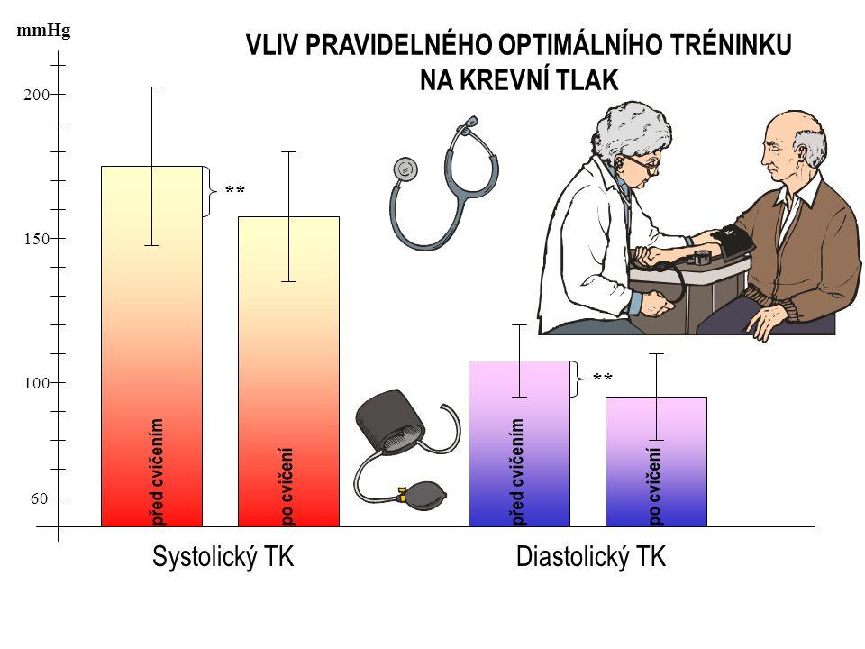 200 150 100 60 mmHg VLIV PRAVIDELNÉHO OPTIMÁLNÍHO TRÉNINKU NA KREVNÍ TLAK Systolický TKDiastolický TK před cvičením po cvičení **