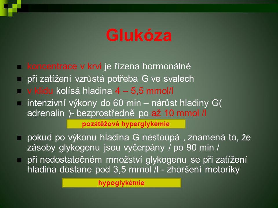 Glukóza koncentrace v krvi je řízena hormonálně při zatížení vzrůstá potřeba G ve svalech v klidu kolísá hladina 4 – 5,5 mmol/l intenzivní výkony do 6