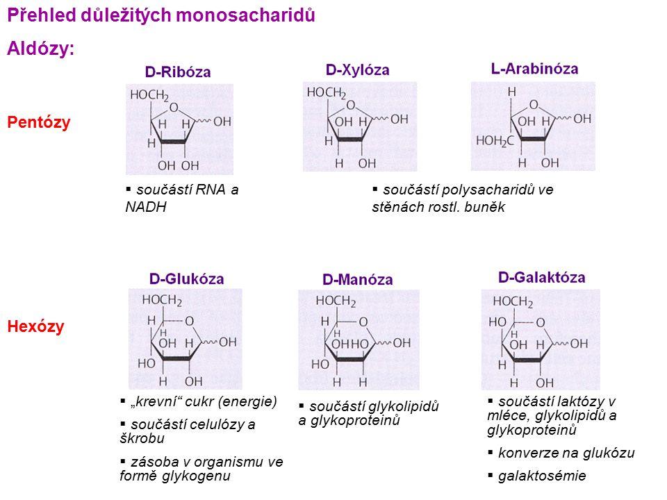 """Přehled důležitých monosacharidů Aldózy: Pentózy Hexózy  součástí RNA a NADH  součástí polysacharidů ve stěnách rostl. buněk  """"krevní"""" cukr (energi"""